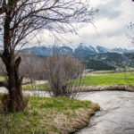 7007-jackson-creek-road-creek-mountains-1