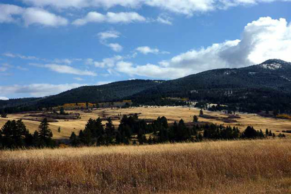 Bozeman Horse Property Sold