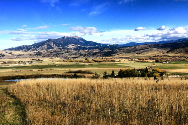 Bozeman, Montana Ranch Sold