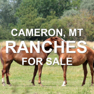 Cameron Ranches For Sale