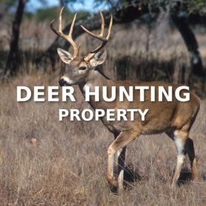 Deer Hunting Property