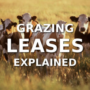 Grazing Leases