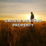 Grouse Hunting Property