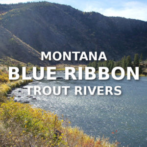 Montana Blue Ribbon Trout Rivers