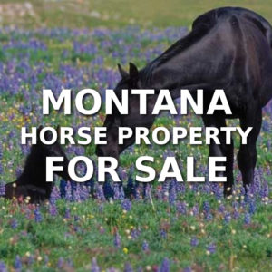 Montana Horse Property For Sale