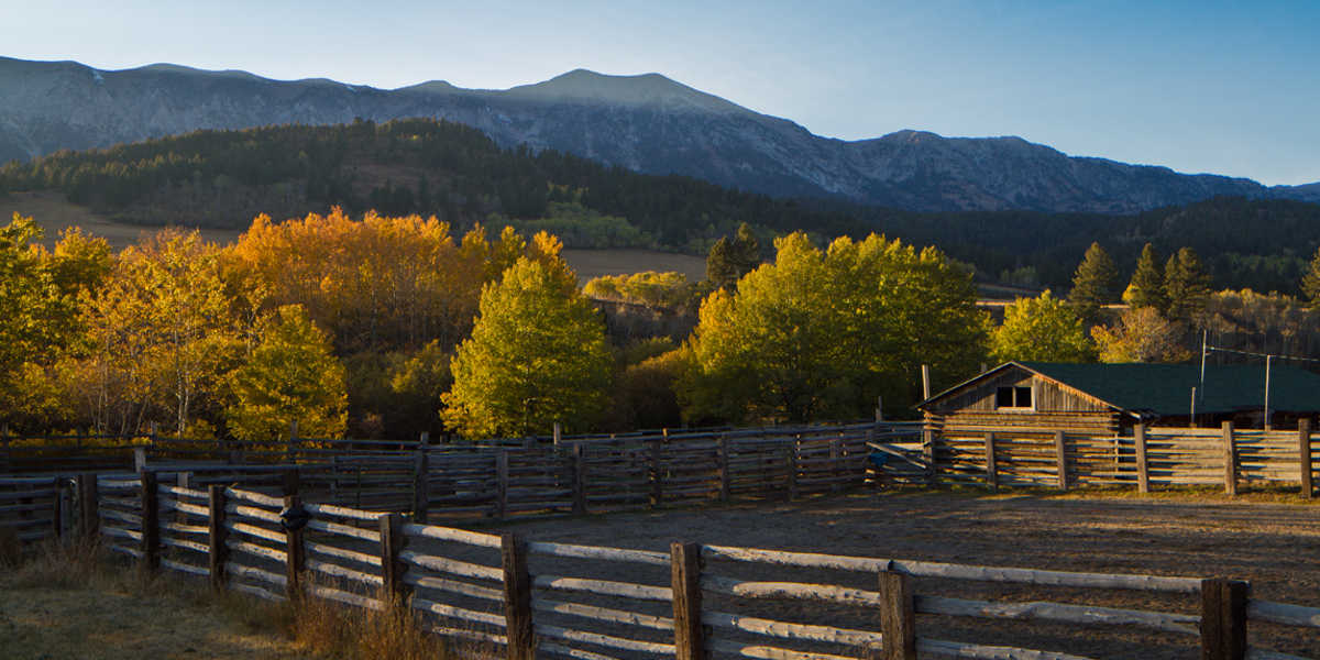 Ranch real estate group explore montana ranches for sale for Montana ranch house