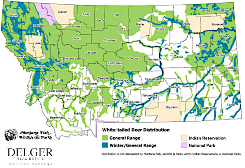 Montana Whitetail Deer Hunting Property Map